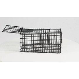 MS Wire trap Rat