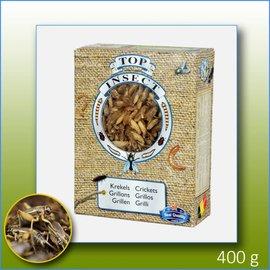 Top insect DIEPVRIES ALLEEN IN DE WINKEL VERKRIJGBAAR!!!!!!! Top Insect Krekels
