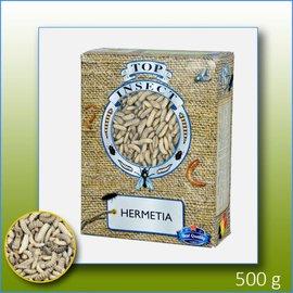 Top insect DIEPVRIES ALLEEN IN DE WINKEL VERKRIJGBAAR!!!!!!! Top insect Diepvries Hermetia