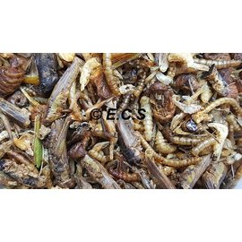Anipro Dried Insect mix