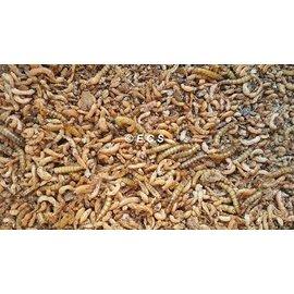 Ecs Insect mix + 700gram