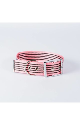 Canvasco Urban Dogs Halsband Roze 40mm