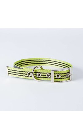 Canvasco Urban Dogs Halsband Groen 25mm