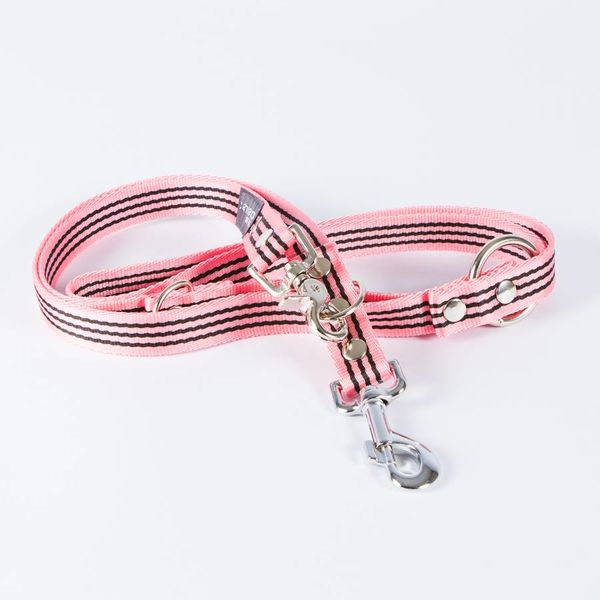 Canvasco Urban Dogs Riem Paule Roze 25mm