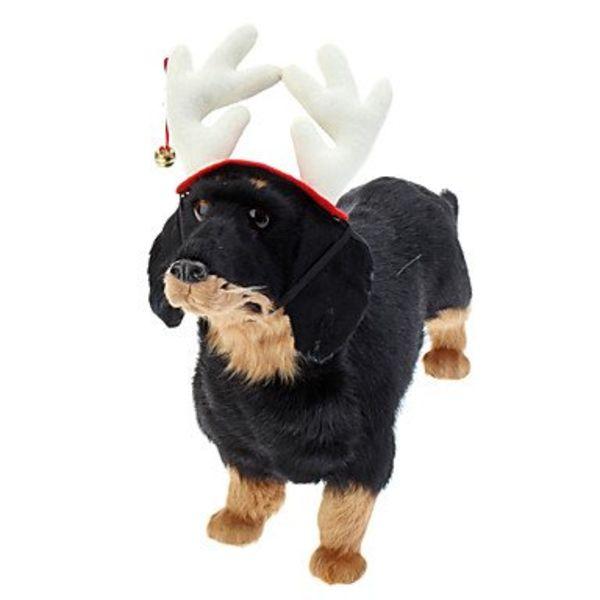 Honden Kerst Gewei met Belletje