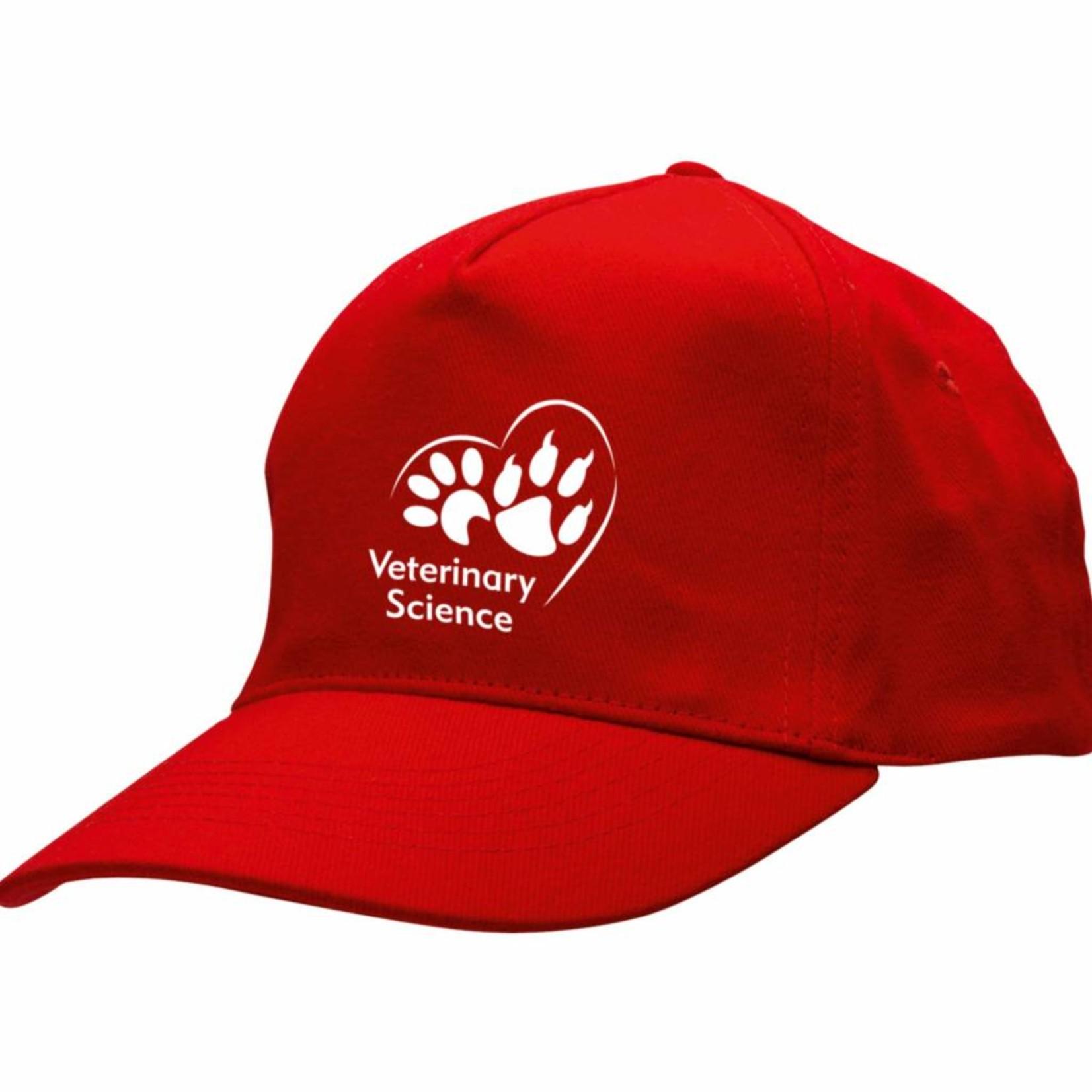 Baseball Cap met logo
