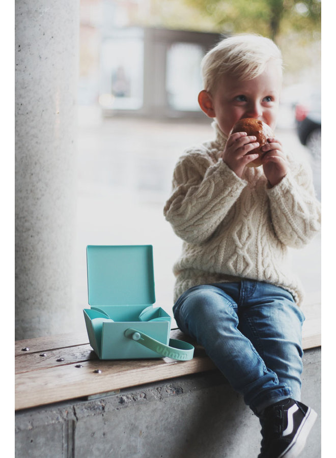 mint green folding lunch box that you can also use as a plate. With mint strap.