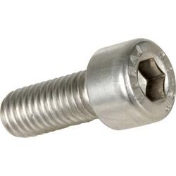 Stainless Steel Socket Screw M6 x 14 mm (Minimum order amount = 10)