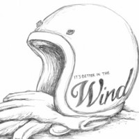 It's better in the Wind - Scott Troepfer