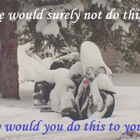 How To: Winter prep your motorcycle in 8 steps