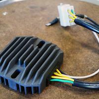 Rick's Electronics Lithium Gelijkrichters