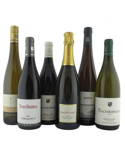 Pasteuning Thuisblijf pakket Duitsland - 6 flessen