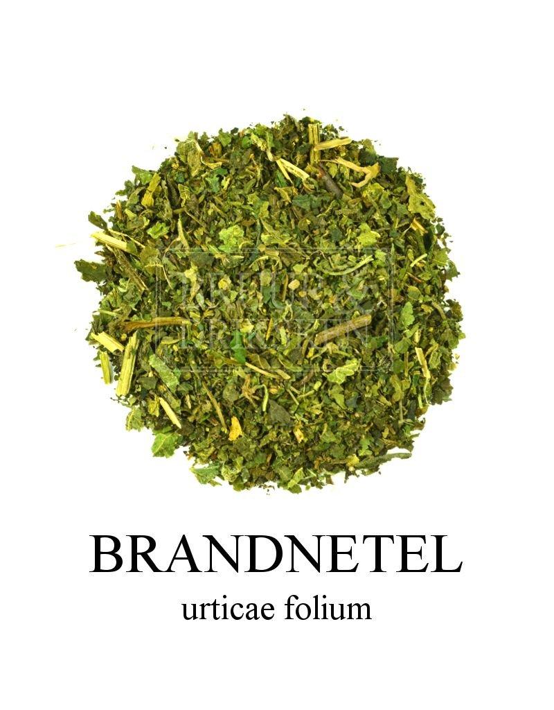 Bruur Brandnetel thee (kruidenthee)