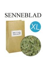 Senneblad XL (senna)