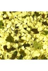 Zeezout met zeewieren