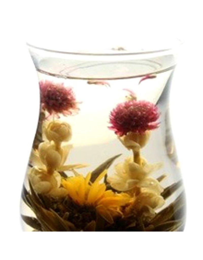 Bruur theebloemen (bloeiende thee)