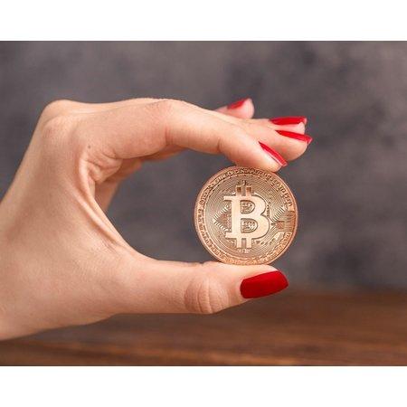 Geeek 'Echte' Bitcoin Munt -  ø 40mm - in plastic opbergcase