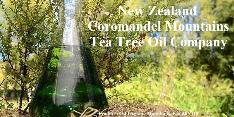 Manuka Tea Tree Olie NZ