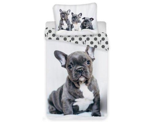 Franse Bulldog / Engelse Bulldog