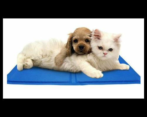 Huisdieren benodigdheden