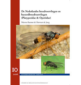 Dutch broad-foot flies (Platypezidae & Opetiidae)