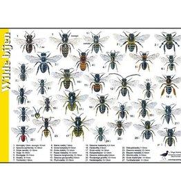 Herkenningskaart Wilde Bijen