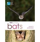 RSPB Spotlight-bats