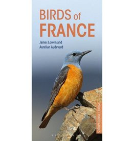 Pocket Photo Guide to the Birds of France