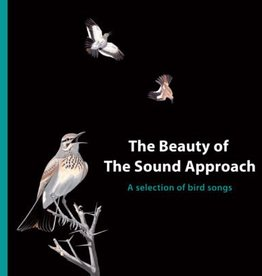 The Beauty of The Sound Approach (LP)