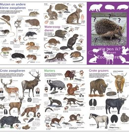 Search map mammals