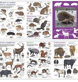 Search map mammals