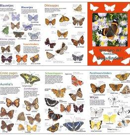 search map butterflies