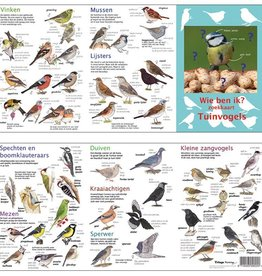 search map birds in the garden