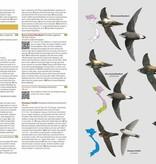 Birds of Vietnam