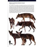 Canids of the World Wolves, Wild Dogs, Foxes, Jackals, Coyotes, and Their Relatives