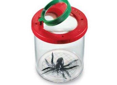 Insectenstudie