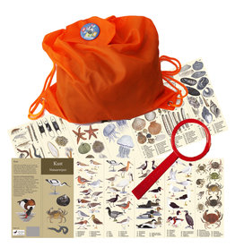 Tringa Paintings Beach findings package