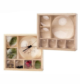Kikkerland Huckleberry insect box