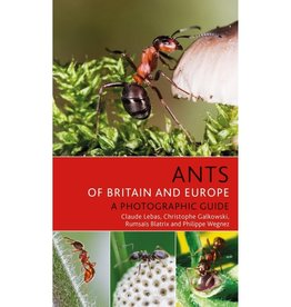 Ants of Britain and Europe