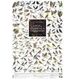 Korck Birds of Gardens & Parklands Poster
