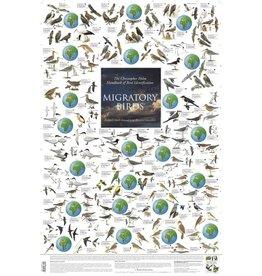 Korck Migratory Birds Poster