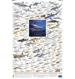Korck Sharks of the World, 2: Offshore Reefs Poster