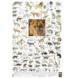 Korck Carnivores of Africa Poster