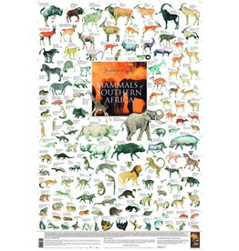 Korck Mammals of Southern Africa Poster