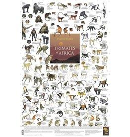 Korck Primates of Africa Poster