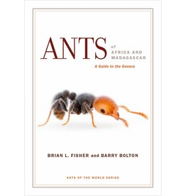 Ants of Africa and Madagaskar