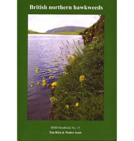 British Northern Hawkweeds