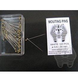 Ento Sphinx Special Label Pins - 20mm