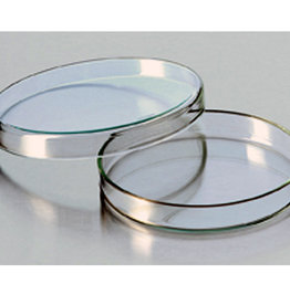 Petri dish glass 100 x 20mm