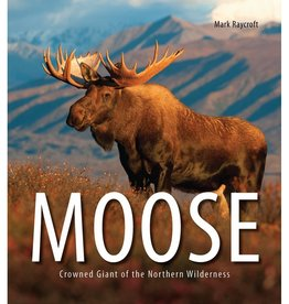 Moose: Crowned Giant of the Northern Wilderness